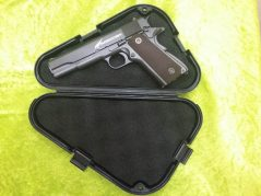 TRIANGLE-PLASTIC-PISTOL-CASE